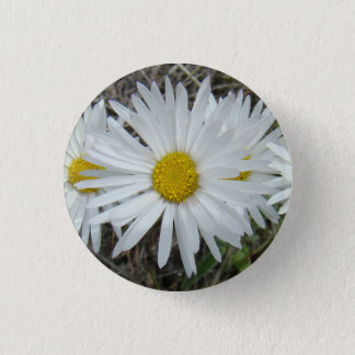 F0042 White Wildflowers Smooth Aster 3 Cm Round Badge