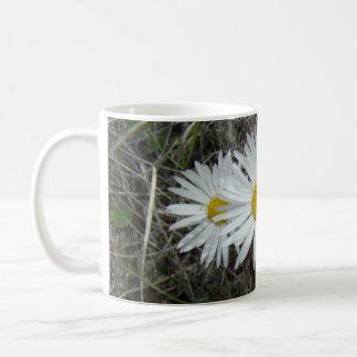 F0042 White Wildflowers Smooth Aster Mugs