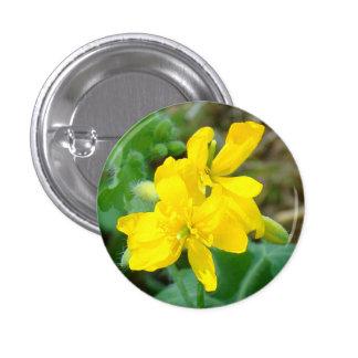 F0044 Yellow Wildflowers Wild Mustard Button