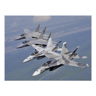 F-15 and other Navy Planes Poster