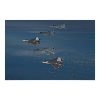 F-22 Raptors and F-15 Eagles Poster