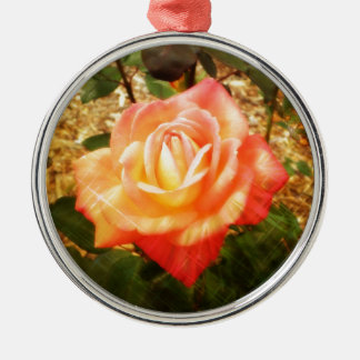 Fab Rose Silver-Colored Round Decoration