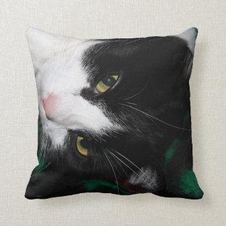 Fabulous Cats! Cushion