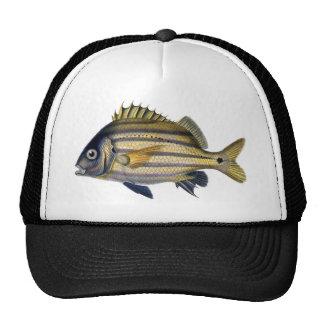 Fabulous Realistic Fish Painting Trucker Hat