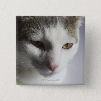 Face of a cat 15 cm square badge
