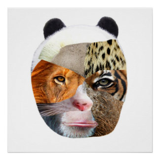 Face Of Fauna Poster