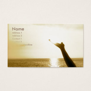 Aviation business cards business card printing zazzle face of god aviation business card colourmoves