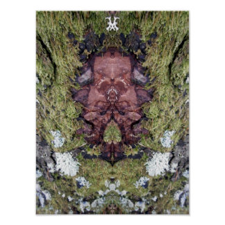 Face of Nature Tree creature Poster