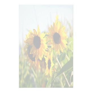 Faded Autumn Sunflowers Stationery