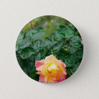Fades wet autumn rose with blur 6 cm round badge