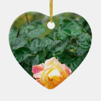 Fades wet autumn rose with blur ceramic heart decoration
