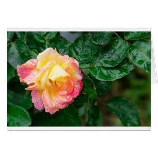 Fading autumn rose card