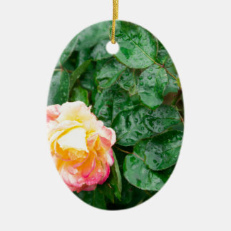 Fading autumn rose with droplets ceramic oval decoration