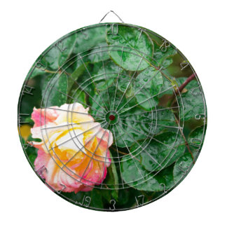Fading autumn rose with droplets dartboard
