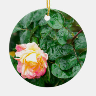 Fading autumn rose with droplets round ceramic decoration