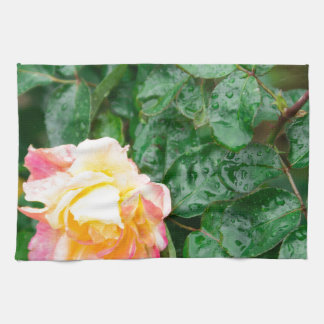 Fading autumn rose with droplets tea towel