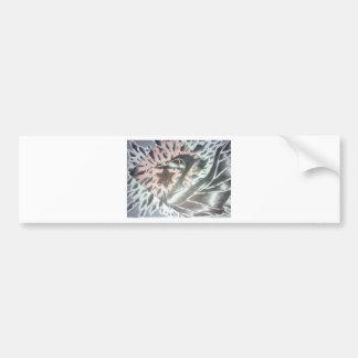 fading swan bumper sticker