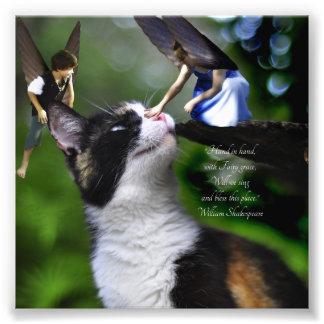 Fairies with Cat William Shakespeare Quote Print