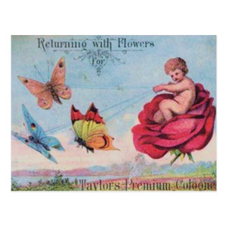 Fairy and Butterflies Cologne Ad Postcard