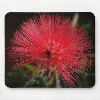 Fairy Duster Mousepad