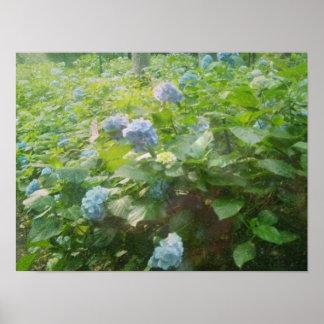 Fairy in hydrangea garden posters