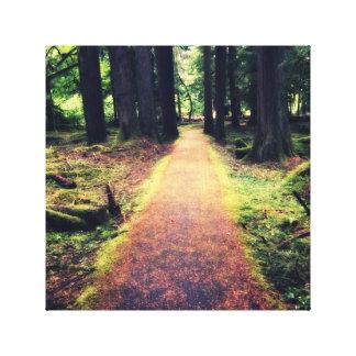 Fairy Path Canvas Print