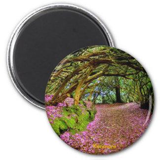 Fairy Tunnel, Kenmare 6 Cm Round Magnet