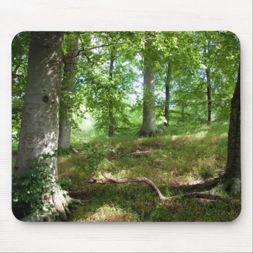 Fairytale forest mousepads