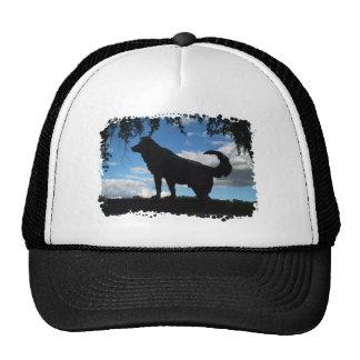 Faithful dog cap