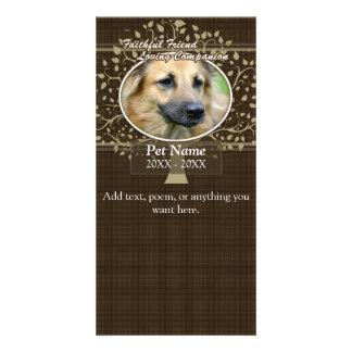 Faithful Friend Custom Pet Sympathy Photo Cards