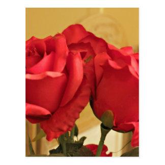 Fake plastic roses postcard