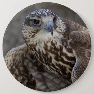 Falco cherrug 6 cm round badge