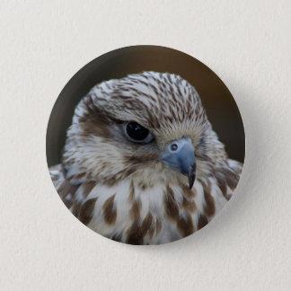 Falco cherrug Portrait 6 Cm Round Badge