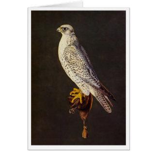 Falcon 16th Century Card