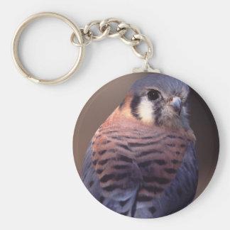 falcon basic round button key ring