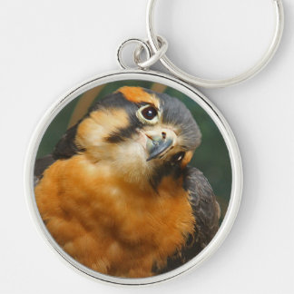 Falcon Giving the Cute Look keychain
