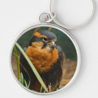 Falcon keychain