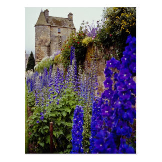 Falkland Palace and flowers, Perth flowers Postcard