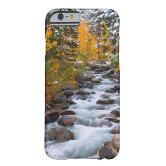 Fall along Bishop creek, California Barely There iPhone 6 Case