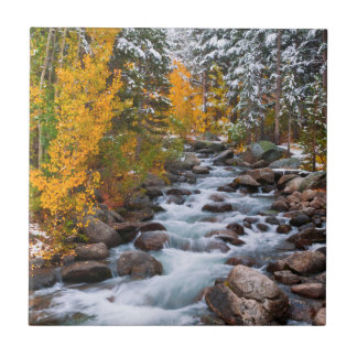 Fall along Bishop creek, California Ceramic Tile