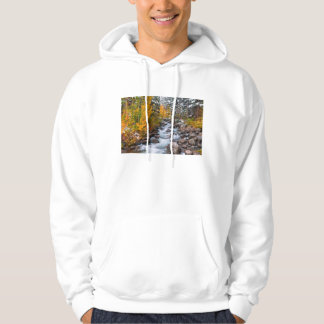Fall along Bishop creek, California Hoodie