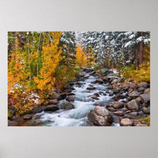 Fall along Bishop creek, California Poster