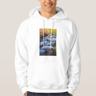 Fall along Lundy Creek, California Hoodie