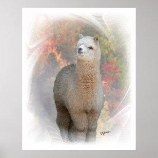 Fall Alpaca Print