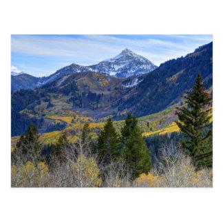 Fall At Cascade Peak And Sundance From Alpine Loop Postcard