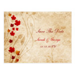 fall autumn brown leaves save the dates post cards