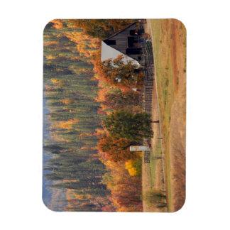 Fall beauty in Hayfork, California... Magnet