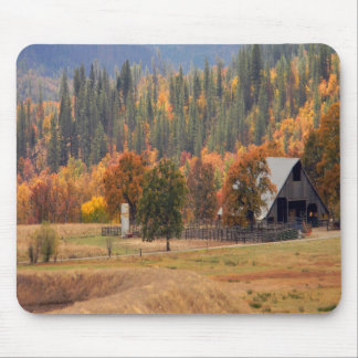 Fall beauty in Hayfork, California... Mouse Pad
