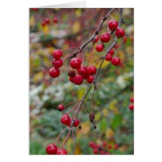 Fall Berries Greeting Card