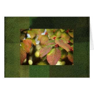 Fall Berries notecard Greeting Card